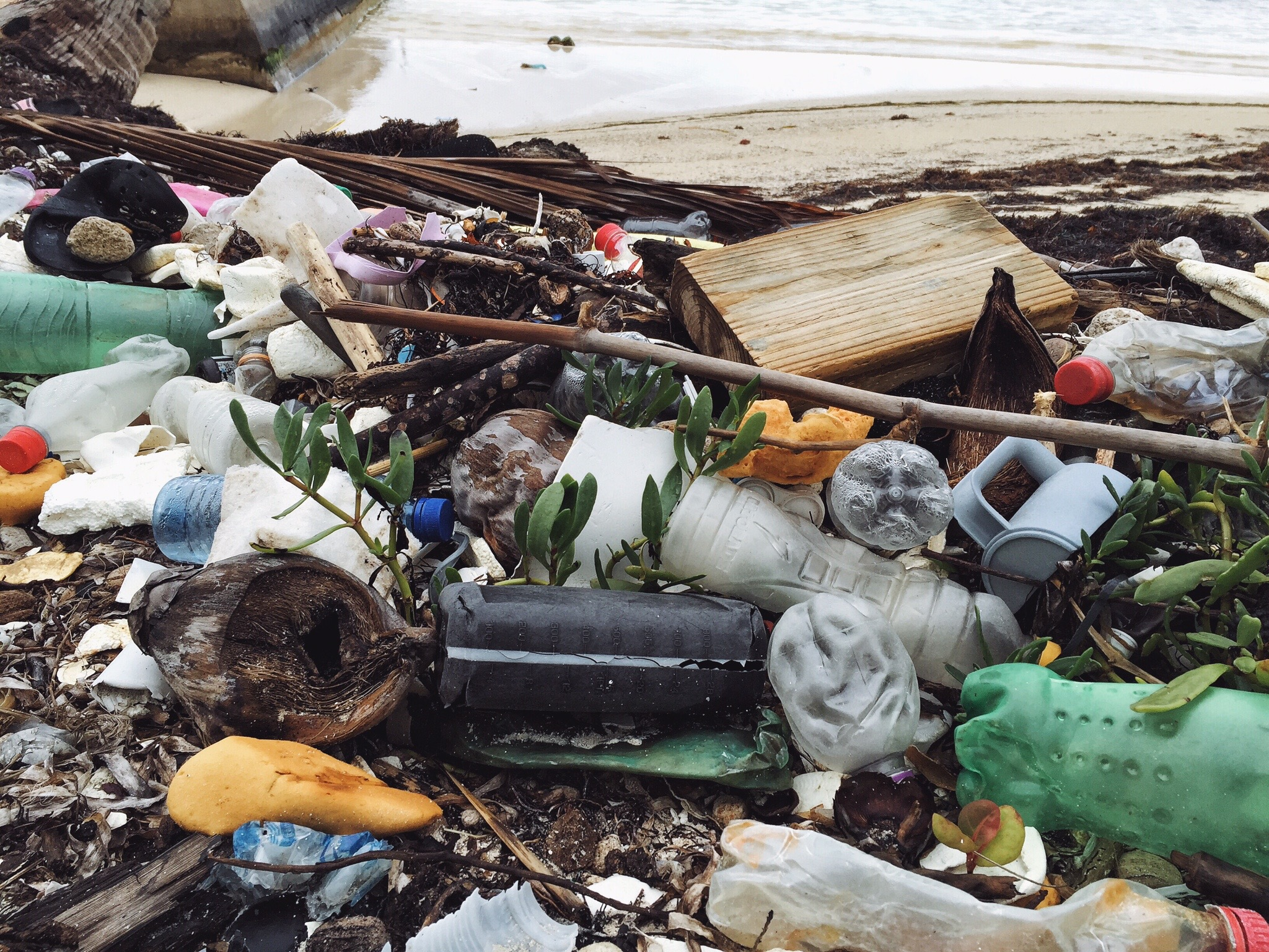 Plastic from the ocean in Belize || The Conscious Collective
